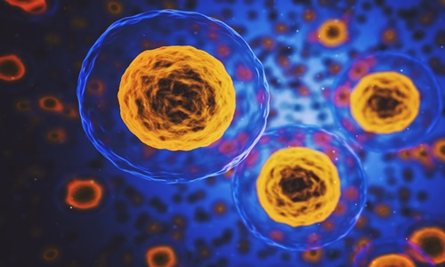 Vor raises $42M in Series A round, develops HSC-based therapy pipeline