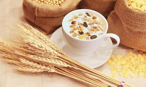 Raisio expands oats production capacity to meet international demands